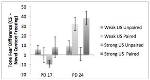 the results of experiment auditory conditioning  only pd 24 subjects exposed to paired cs us presentations demonstrated subsequent enhanced zing to