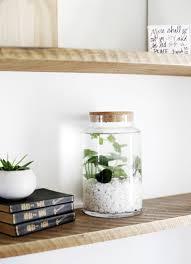 diy indoor water garden themerrythought