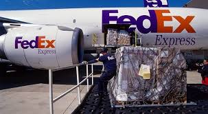 Fedex Stock Quote Enchanting FedEx Stock Will Keep Delivering The Goods Despite Today's Earnings