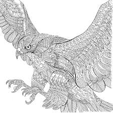 Image Result For The Menagerie Colouring
