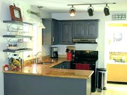 professional cabinet paint freshly painted kitchen cabinets professional kitchen cabinet painting cost professional cabinet paint professional
