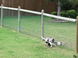 inexpensive fence styles. Cheap Fencing Ideas Stylish Inexpensive For Dogs Fence On And Styles
