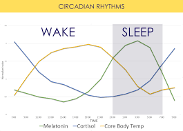 Circadian Rhythm And Blue Light Can Circadian Smart Lighting Actually Improve Your Health