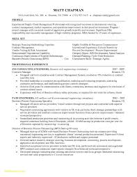 Sports Management Resume Examples It Director Resume Objective