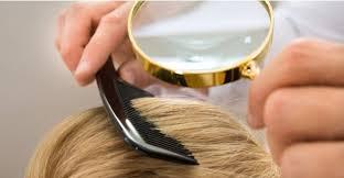 Как вывести вши у ребенка с длинными волосами безопасными средствами Контрольное обследование