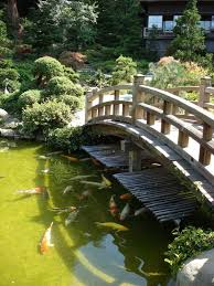 backyard landscaping ideas japanese