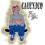 Feast of Wire album by Calexico