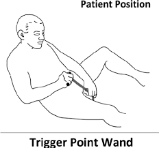 remended patient position for locating and maging anterior pelvic muscles and prostate