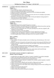 Caterer Resume Catering Resume Samples Velvet Jobs