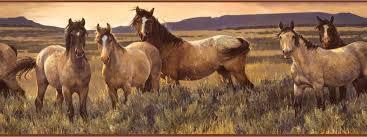 grey horse wallpaper