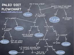 Paleo Diet Flowchart: Is It Paleo? / Ultimate Paleo Guide