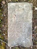 Avis N. Shelton - Find A Grave Memorial