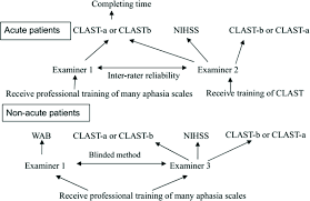 Aphasia Chart The Flow Chart To Administer Aphasia Scales In Acute And Non