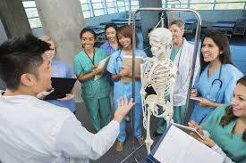Choose a Medical Career to Suit Your Personality | Top Medical ...