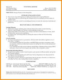 Resume Professional Summary Examples Best Resume Career Summary Resume Career Summary Examples Professional