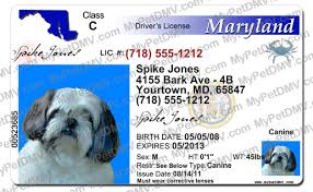 License Maryland Id License Maryland Pet Pet Maryland Pet Id Id License