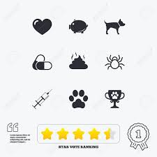 Voting Quotes Inspiration Veterinary Pets Icons Dog Paw Syringe And Winner Cup Signs