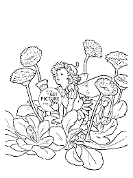 Flower Fairy Double Daisy Coloring Page
