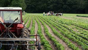 organic uses less energy searches for even lower carbon farming organic farming photo