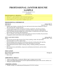 Resume Professional Profile Examples Best Of Sample Examples Ofe Summary Resume For Customer Service