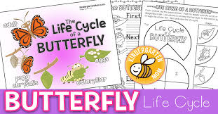 Butterfly Life Cycle Printables Kindergarten Mom
