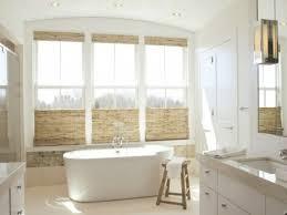 Home Decor : Bathroom Window Treatments Ideas Bath And Shower ...