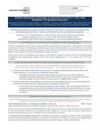Cio Resume Templates Examples Pdf Sample Doc Curriculum Vitae
