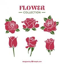 Small Picture Hand drawn roses Vector Free Download