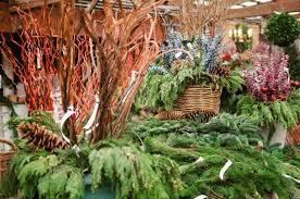 hillenmeyer nur lexington ky image mag photo of king s gardens garden center