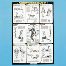 Self Instruction Weight Training Poster Free Weight Exercises