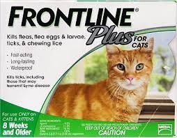 Frontline Plus Flea Tick Cat Kitten Treatment 6 Treatments