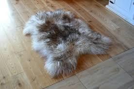 icelandic sheepskin rug grey white curly sheepskins for icelandic sheepskin rug