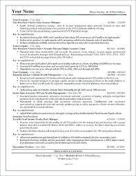 Resume Executive Summaries 7 Executive Summary Report Example Template It Format