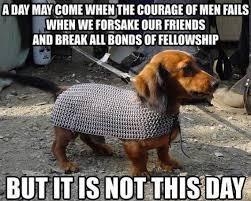 25 Funny Dog Memes: Part 2 - Dogtime via Relatably.com