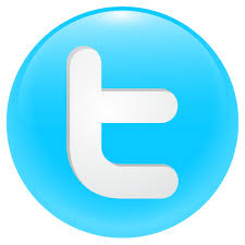 Bird, button, logo, round, social, social media, tweet, twitter icon