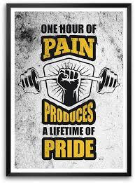 Gym Quotes Beauteous Lifetime Of Pride Gym Quotes Paper Print Quotes Motivation