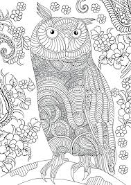 Free Full Page Coloring Pages Trustbanksurinamecom