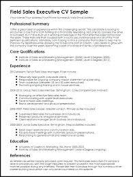 Senior Hr Executive Resume Sample Marketing Manager Template