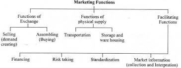 essay on importance of marketing in agriculture
