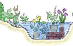 Small Picture How to Build a Water Garden Gardeners Supply