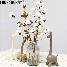 <b>FUNNYBUNNY</b> Made from Real <b>Natural</b> White Cotton Flowers Bolls ...