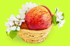 green and red apples in basket. red apples in a wicker basket with flowers of apple isolated on green background | stock photo colourbox and