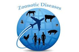 Menyukai dan berpengalaman dengan anjing, kucing, ikan, burung 2. Presiden Instruksikan Menkes Tingkatkan Pencegahan Dan Pengendalian Zoonosis Niaga Asia