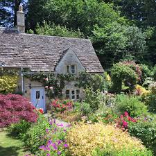 Small Picture hardy cottage garden plants australia Latest Home Decor and Design