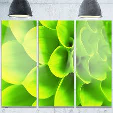 designart bright green flower petals modern floral glossy metal wall art free shipping today overstock on lime green metal wall art uk with wall art luxury lime green metal wall art hd wallpaper pictures lime