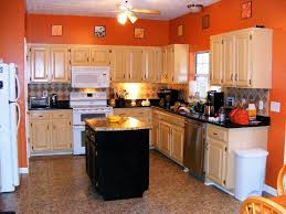 Light Wood Cabinets Kitchen Kitchen Color Schemes With Wood Cabinets