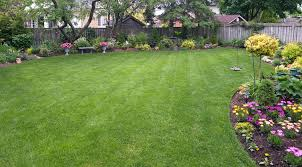Lawn Care Services In North Little Rock Ar Adams