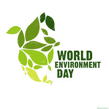 essay on world environment day world environment day