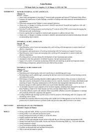 Classy Associate Auditor Sample Resume With Additional It Audit