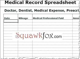 Medical Records Template Daily Medication E Spreadsheet Inspirational L On Time Template